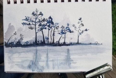 Doodlewash Tree
