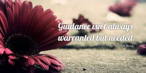 Guidance isn't always warranted but needed.