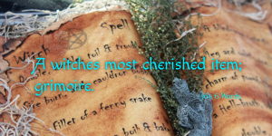 A witches most cherished item; grimoire.